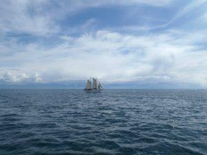 Mallory Todd Ship
